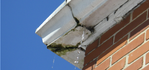 Prevent guttering repairs by cleaning your gutters frequently