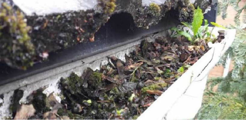Gutter cleaning helps to prevent drains blocking