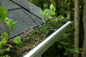 Problems with gutter guard mesh