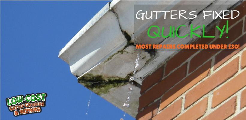 Gutter Repairs XXXX